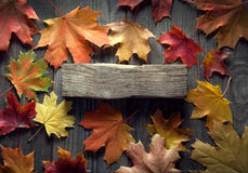 Autumn background with spices, dried flowers, copy place for ins royalty free stock photography