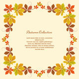 Autumn background, square frame with yellow leaves Royalty Free Stock Photos
