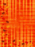 Autumn background squared Stock Image