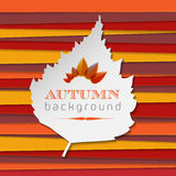 Autumn background with stripes and leaf Royalty Free Stock Photo