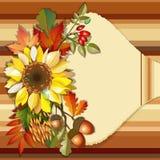 Autumn background with sunflower Stock Photo