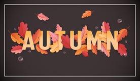 Autumn Background Template avec les belles feuilles et gouttes de pluie, illustration d'automne avec l'art de papier pour la bann illustration libre de droits
