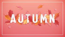 Autumn Background Template avec les belles feuilles et gouttes de pluie, illustration d'automne avec l'art de papier pour la bann Images libres de droits