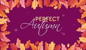 Autumn Background Template met Mooie Bladeren en Regendruppels, Dalingsillustratie met Document Kunst voor Webbanner, Kaart Stock Fotografie