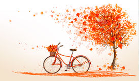 Autumn background with a tree and a bicycle. Stock Images