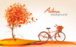 Autumn background with a tree and a bicycle. Royalty Free Stock Images
