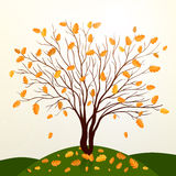 Autumn background with tree and grass vector Stock Images