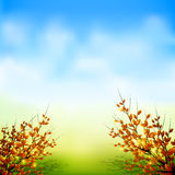Autumn background. Autumn tree and leaf with sky background Royalty Free Stock Images