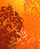 Autumn background with trees Stock Photography