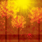 Autumn background with trees and falling leaves Stock Images