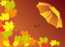 Autumn background with umbrella. Vector illustration Royalty Free Stock Photos