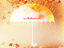 Autumn background with umbrella and leaves. EPS 10 Stock Images