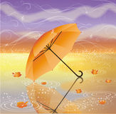 Autumn background with umbrella Stock Images