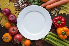 White empty plate and hindu vegan diet food top view. Autumn background with various vegetables around white empty dish top view Royalty Free Stock Photo