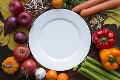 White empty plate with various vegetables top view. Autumn background with various vegetables around white empty dish with top view Stock Image