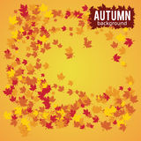 Autumn background vector illustration Stock Images