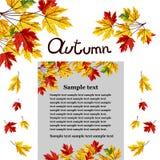 Autumn background vector illustration. Banner of autumn leaves vector illustration. Background with hand drawn autumn leaves. Design elements. Autumn leaves fall royalty free illustration
