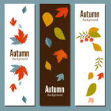 Autumn background vector illustration Stock Photography