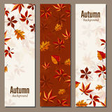 Autumn background vector illustration Royalty Free Stock Photography