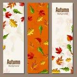 Autumn background vector illustration Stock Photo
