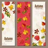 Autumn background vector illustration Stock Image