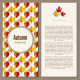 Autumn background vector illustration. Banners set of autumn leaves vector illustration. Background with hand drawn autumn leaves. Design elements. Autumn leaves Stock Image
