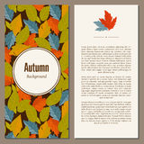 Autumn background vector illustration. Banners set of autumn leaves vector illustration. Background with hand drawn autumn leaves. Design elements. Autumn leaves Stock Images