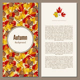 Autumn background vector illustration. Banners set of autumn leaves vector illustration. Background with hand drawn autumn leaves. Design elements. Autumn leaves Royalty Free Stock Photo