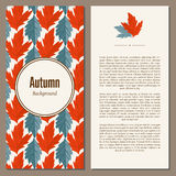 Autumn background vector illustration. Banners set of autumn leaves vector illustration. Background with hand drawn autumn leaves. Design elements. Autumn leaves stock illustration