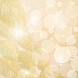 Autumn background. Vector autumn leaf background with shine effect Stock Photo