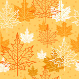Autumn background. Vector maple leaves. Royalty Free Stock Photography