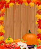 Autumn background with vegetables. Stock Image