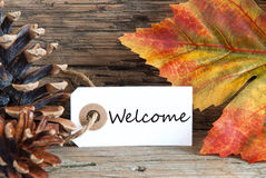 Autumn Background with Welcome Label Stock Images