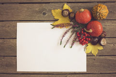 Autumn background with white horizontal sheet and composition in the right top corner. Stock Photography