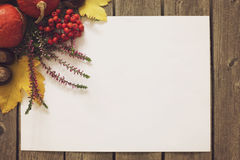 Autumn background with white sheet and composition in the corner. Royalty Free Stock Photo