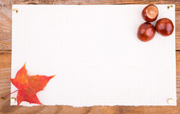 Autumn Background whith chestnut and maple leaf Stock Photos