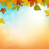 Autumn background. Width leafs and lights Royalty Free Illustration