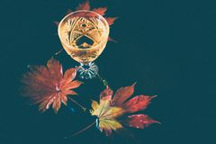 Still life with wine in a crystal glass on the background of red maple leaves. Autumn background with wine in crystal glass on the background of red maple royalty free stock images