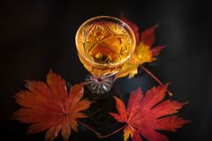 Still life with wine in a crystal glass on the background of red maple leaves. Autumn background with wine in crystal glass on the background of red maple stock images
