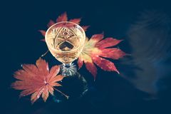 Still life with wine in a crystal glass on the background of red maple leaves. Autumn background with wine in crystal glass on the background of red maple stock image