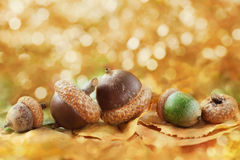 Autumn Background With Acorns, Leaves And Fantastic Bokeh With Copy Space For Your Text Stock Image