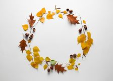 Free Autumn Background With Fall Foliage Frame Stock Photos - 157893173