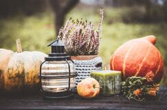 Free Autumn Background With Lantern, Pumpkins, Apple And Heather Flower In Crochet Pot Outdoors In Dark Autumn Day. Stock Photography - 176784222