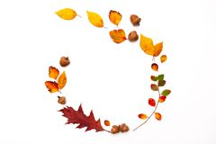 Free Autumn Background With Natural Decor. Wreath Made Of Autumn Dried Leaves. Flat Lay, Top View. Copy Space For Seasonal Promotions Royalty Free Stock Image - 163050246