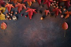 Free Autumn Background With Nuts And Autumn Leaves  On Dark Stone Table Stock Photography - 156955762
