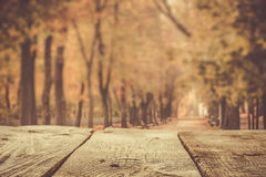 Autumn background with wood table and park Stock Image