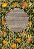 Autumn background with wooden board Royalty Free Stock Image