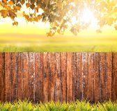 Autumn background with wooden fence, grass and leaves Royalty Free Stock Images