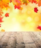 Autumn background with wooden planks Royalty Free Stock Photo
