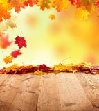 Autumn background with wooden planks Royalty Free Stock Photography
